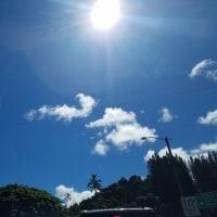 ハワイは冬