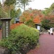 もみじ狩り 静岡県伊豆市修善寺(20)虹の郷:日本庭園、夏目漱石記念館