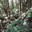 竜王山 長岳寺から竹之内峠