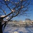 まるで、冬のスイスの風景