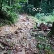 長水山 伊水小6年生の登山ガイド