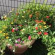楽農クラブの掲示板と花壇-9月