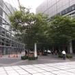 日本作業療法学会