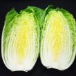 ビタミンCが豊富な野菜【白菜】