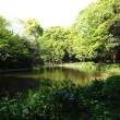 かい堀後の和田堀池