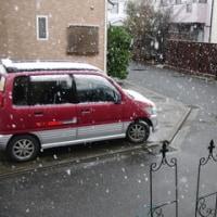 なごり雪… ♪