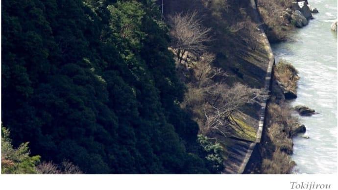嵯峨野観光鉄道 ・ トロッコ列車