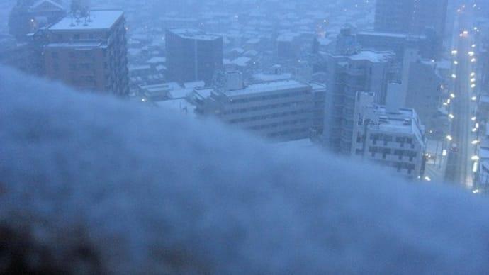 雪の朝はカレーライス