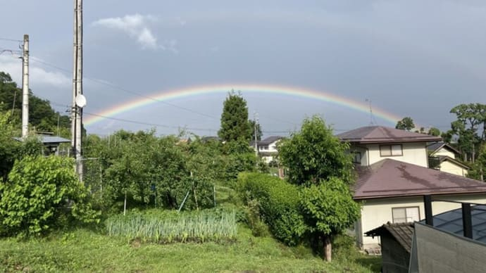 虹、浅川ダム上流のフジバカマ苑の草刈り