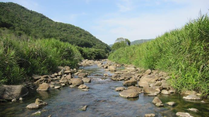 川あそび 5連発(PART2)