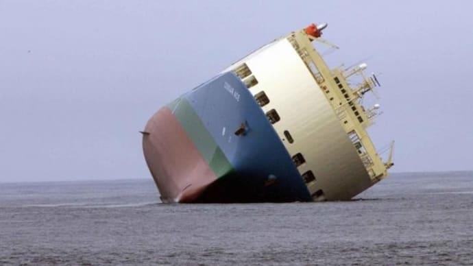 202008マスゴミがずっと隠蔽していた大事件!日本の大型貨物船がモーリシャスで座礁し甚大な環境汚染
