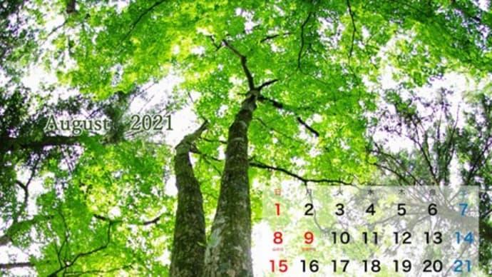 8月のMyカレンダー