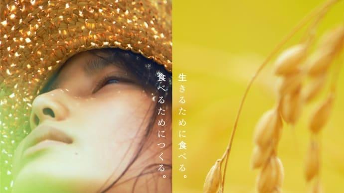 「little forest 夏/秋」♡ ふわふわ雲
