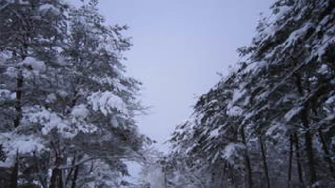 雪明りの宿
