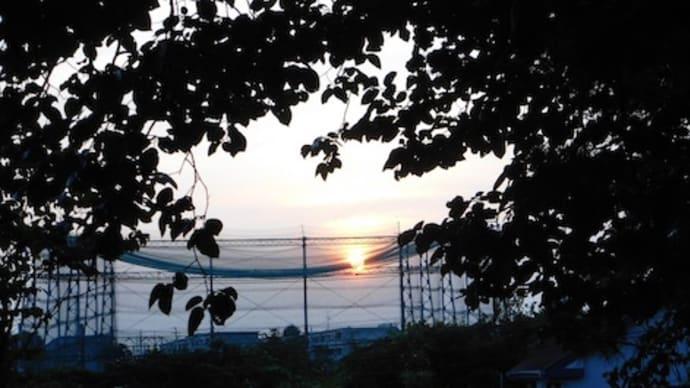 檻の中の夕日