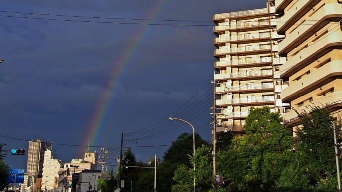 大雨のあとで見えた虹