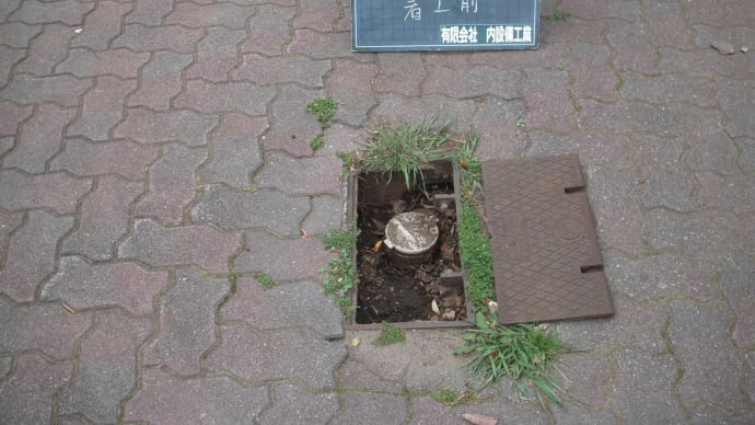 広い公園での漏水調査・・・・千葉市