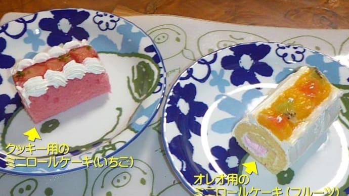 【1月15日 クッキーの『うちの子記念日』でした】
