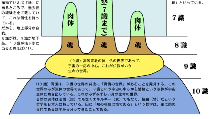 【岡潔の思想】43(理論物理学者 保江邦夫×井口和基 其の2)