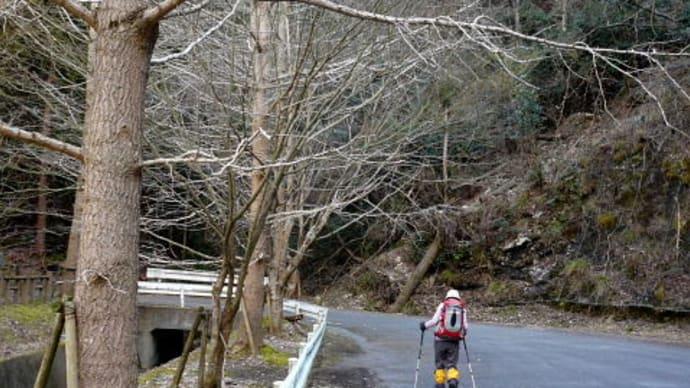 尾切れ~明神山(667m)