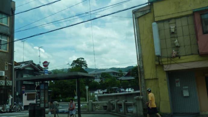なんだか得した気分   京都市バス停「知恩院前」で見かけた保護色な人たち