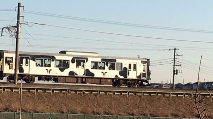 こどもの国線うし電車、箱根駅伝に感動