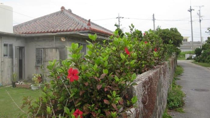 沖縄の風景~いまだに感じる異国情緒
