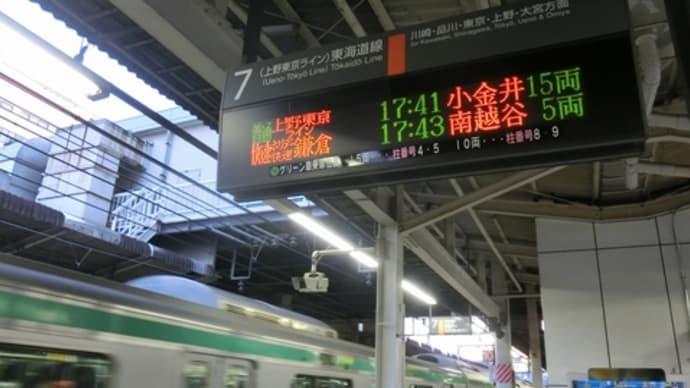 ホリデー快速鎌倉号に乗ったよ