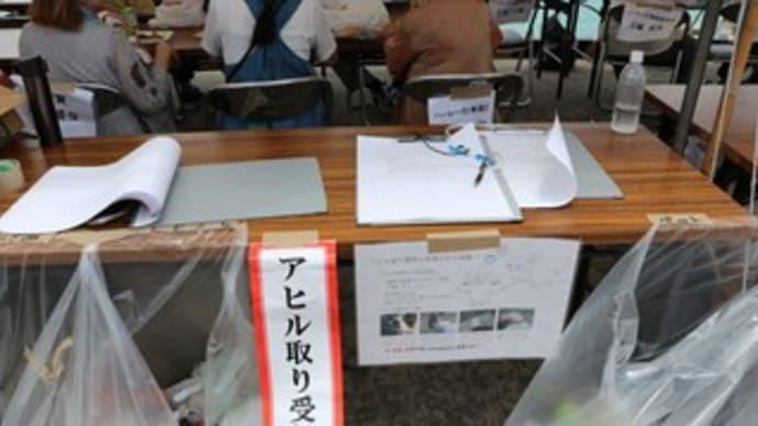 昔ながらの伝統を守る『糸満ハーレー2019』(アヒル取り競争)@沖縄糸満