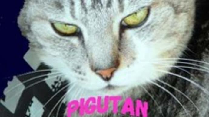 全国ごほんろさんの旅 まずは岩手・・・で、化け猫に遭遇か?