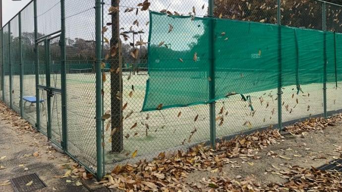 きりがない…枯れ葉が舞い落ちてくる  テニスコートに落ち葉が積もる
