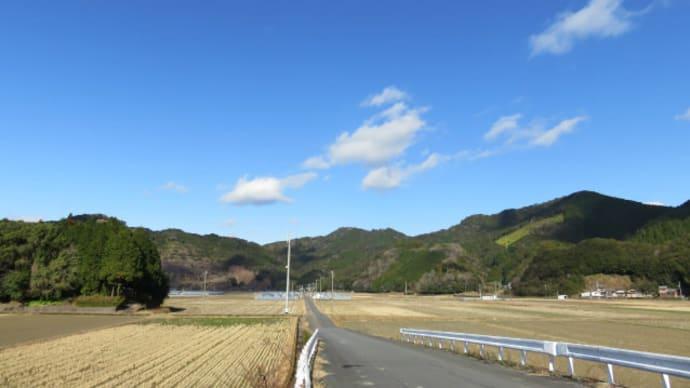 01月12日の散歩 曇/晴