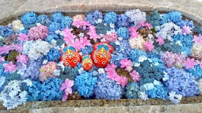 6月はやはりどちらも紫陽花の花手水です。