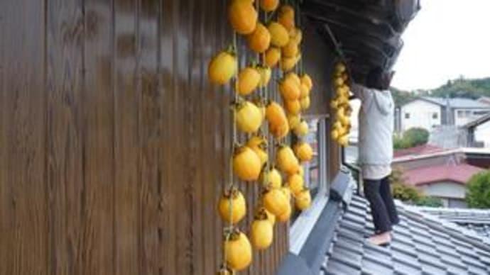 吊るし柿。