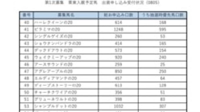 シルク2021 募集馬 最終中間発表