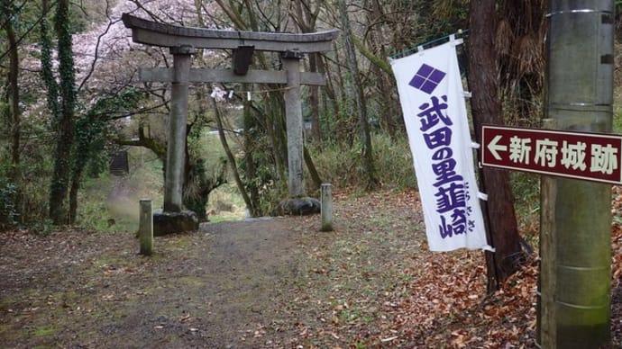 近況注意報 0408 韮崎篇
