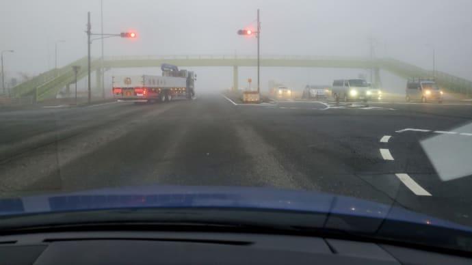 霧、すごい!