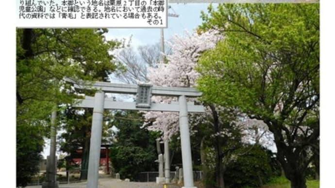 花巡り 「桜-その1003」 (庚申塔)鷲宮大明神