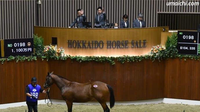 【オータムセール2020(Autumn Sale)、10月19日分)】~結果レポート(最高額馬はエスポワールシチー産駒)