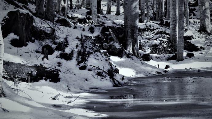 氷の道、冬の朝