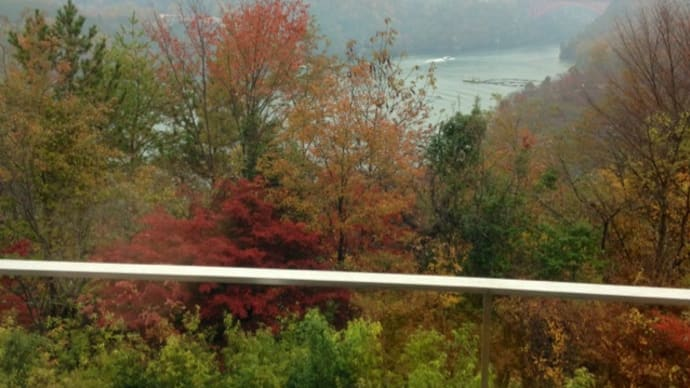 冷たい雨と、恵那峡の紅葉と