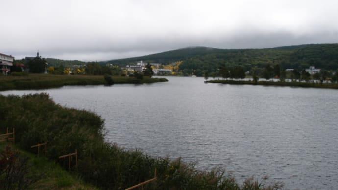 白樺湖、車山、八島ヶ原湿原へ(1)