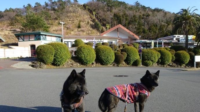 小室山公園 & 押し花体験