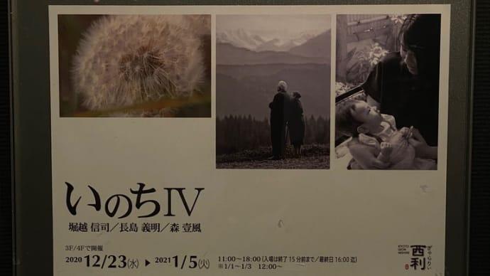年末年始‼️写真展「いのちⅣ」