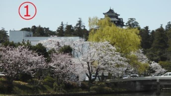 松江城の桜と武者行列見物。