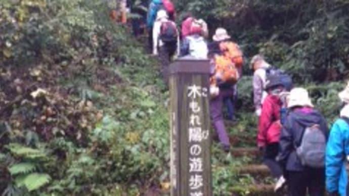 ウオーキング:新津丘陵