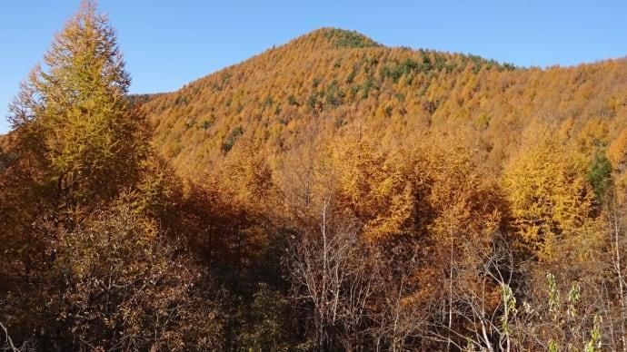 秋の 峰の原高原◆峰の原高原リゾート[P]