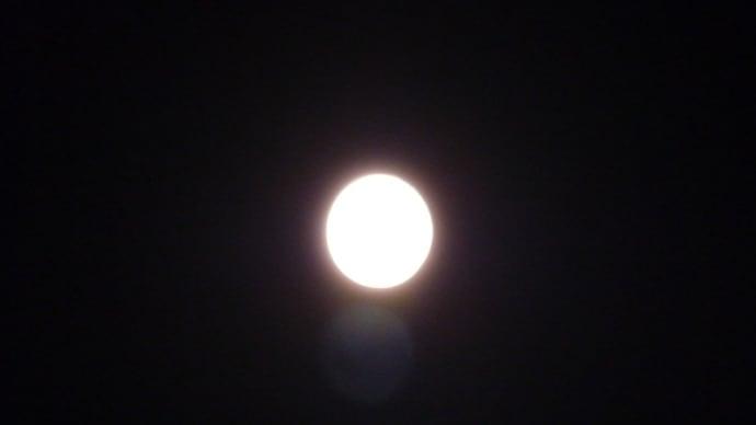 昨夜は満月だった。