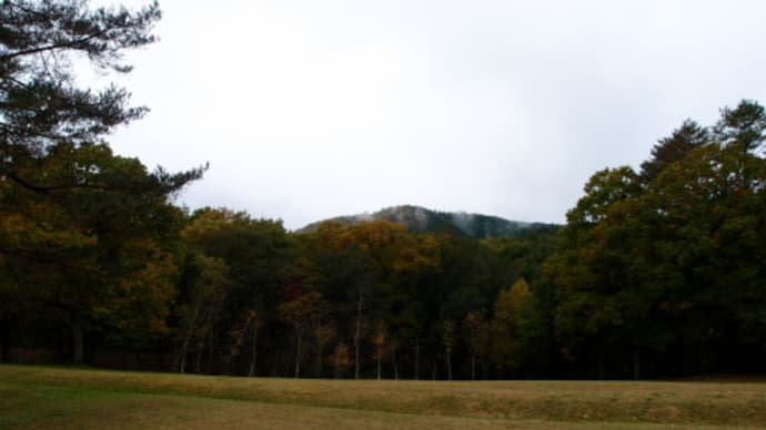 天気予報が外れて今朝は雨だ。これでは山歩きはつまらない (2016/11/2)