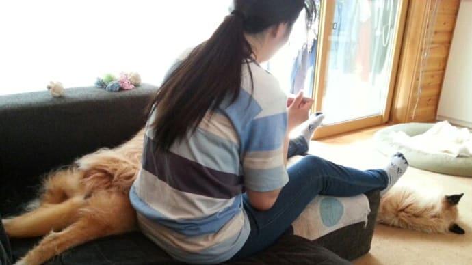 妻にくっつくユノ